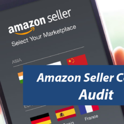 Amazon-Seller-Central-Audit